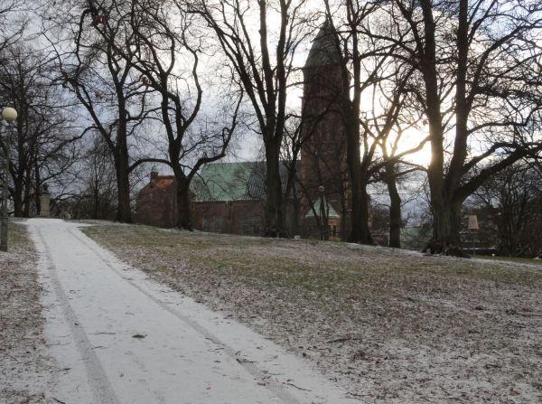 Solitaria nieve. Foto R.Puig