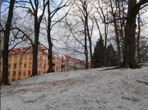 Tímida nieve. Foto R.Puig