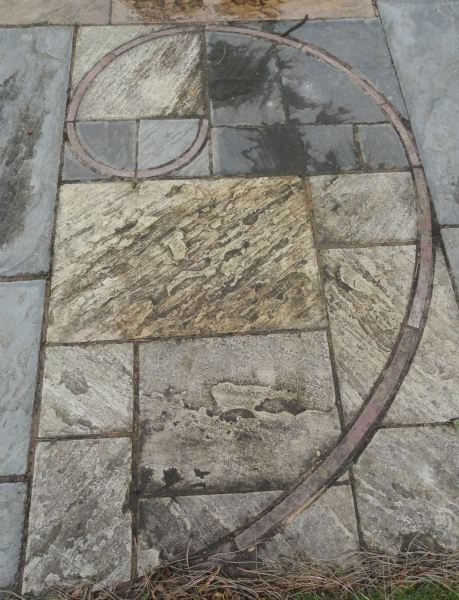 Espiral de Fibonacci. Botánico de Leicester. Foto R.Puig -