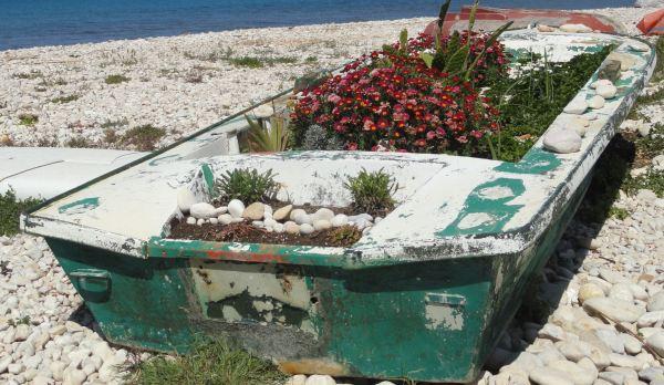 La barca florida. Foto R.Puig