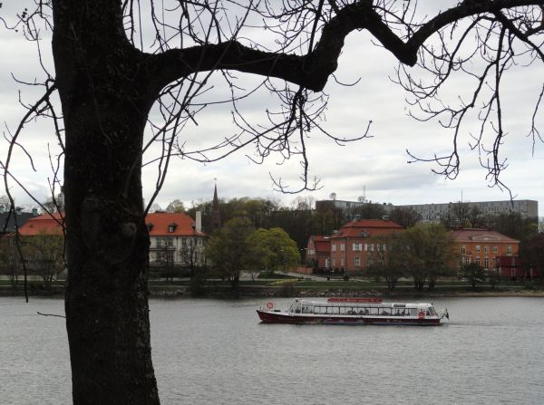 De paseo en tarde nublada por Rosendalsvägen. Estocolmo. Foto R.Puig