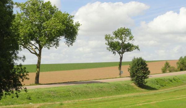 Camino a Barbençon. Foto R.Puig
