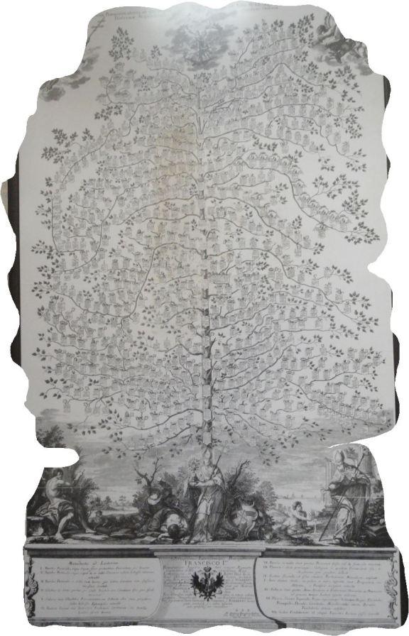 El árbol genealógico de los Premonstratenses. Grimbergen. Foto R.Puig