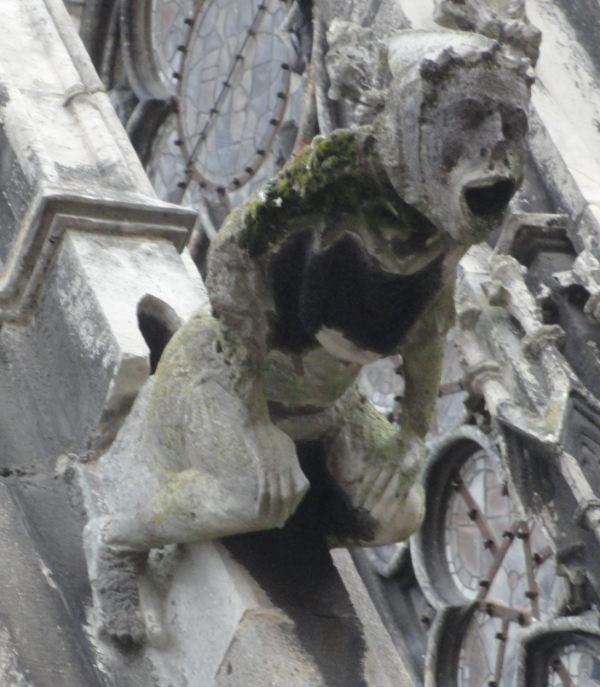 Gárgola de la catedral. Troyes. Foto R.Puig