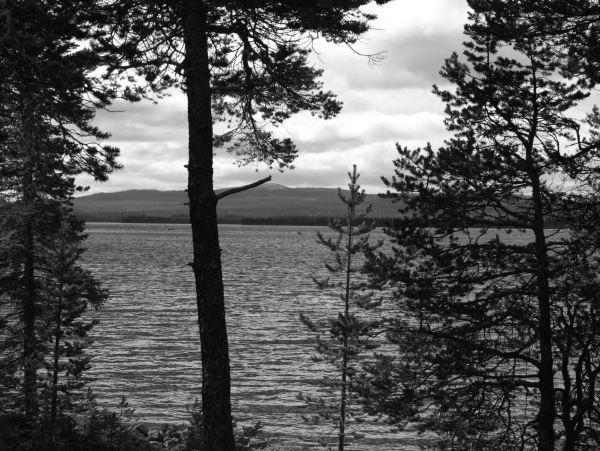 El lago Femunden. Foto R.Puig