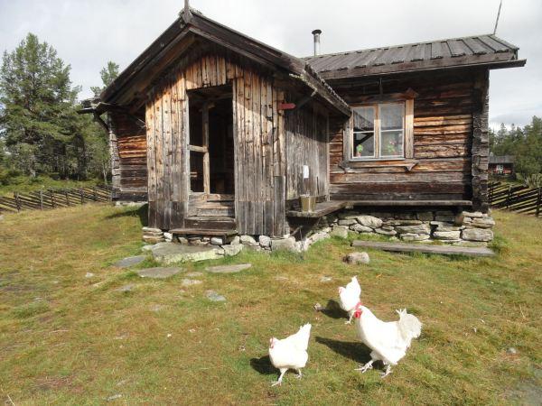 La granja de Valdalsbygget. Foto R.Puig