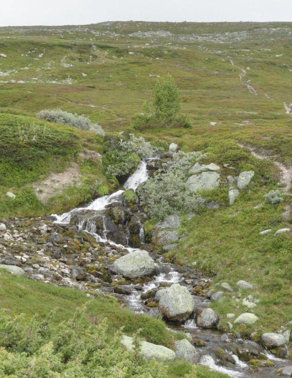 Torrente en las laderas del Rundhøgda. Foto R.Puig