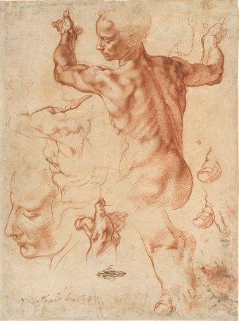 Michelangelo Buonarroti. Estudios para la Sibila Libia. Metropolitan N,Y