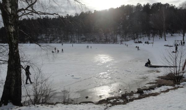 Sol de invierno en el Delsjön. Febrero 2018. Foto R.Puig