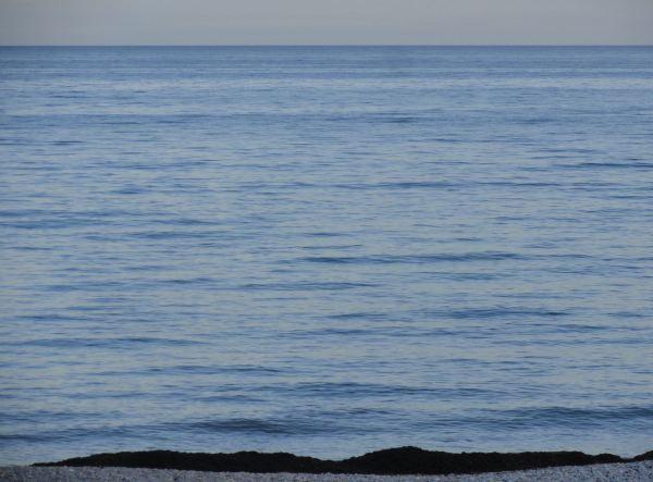 Azul y negro. Foto R.Puig