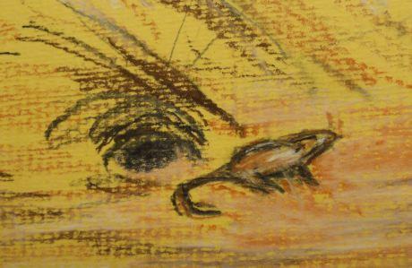 """mus prorepsit e terra"". Dibujo R.Puig"