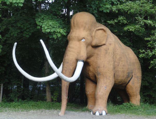 In memoriam. Zoo de Borås. Foto R.Puig