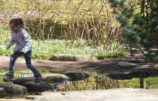 Saltarina. Jardín botánico. Gotemburgo. Foto R.Puig