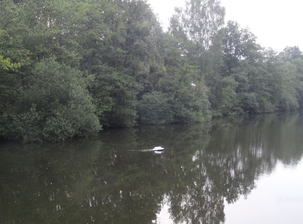 Esto fue un canal antitanques de la provincia de Amberes. Foto R.Puig