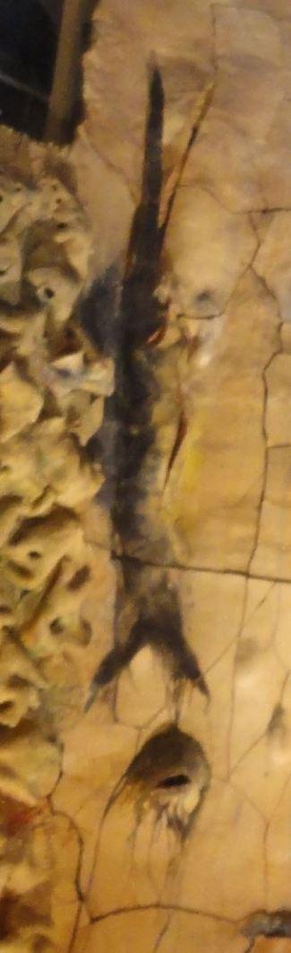 El pez negro. Miquel Barceló. Palma de Mallorca. Foto R.Puig