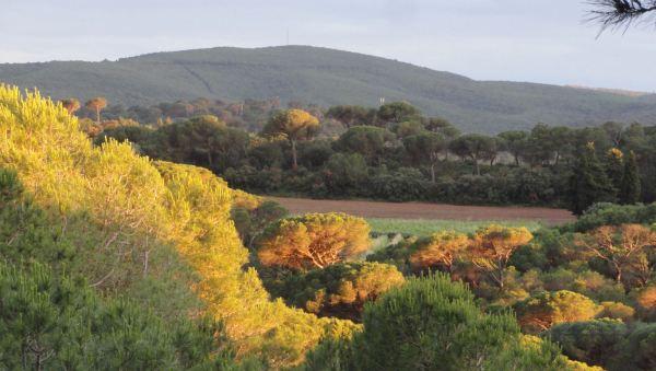 Parajes de Fontefroide. Foto R.Puig