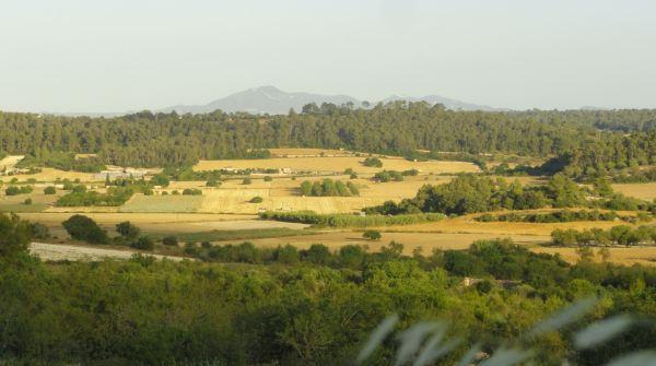 """Vista desde del """"pla"""" desde  Montuiri. Foto R.Puig"""
