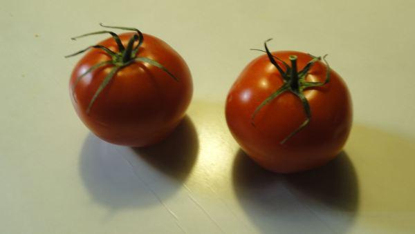 Aquí hay tomate. Foto R.Puig
