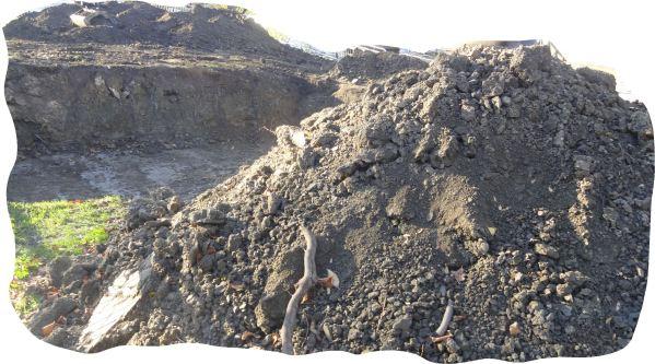 Excavando. Foto R.Puig