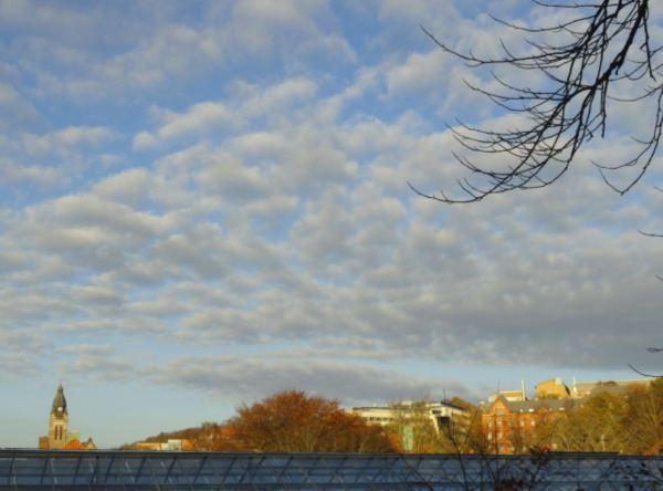 Cielo de otoño desde el Botánico. Foto R.Puig