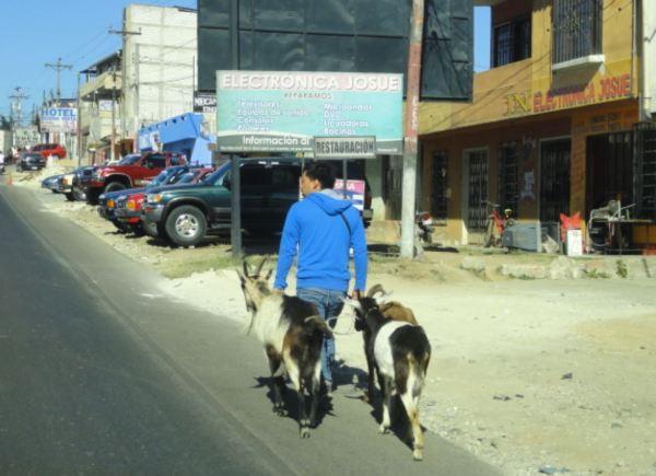 En ruta hacia el lago Atitlán. Foto R.Puig