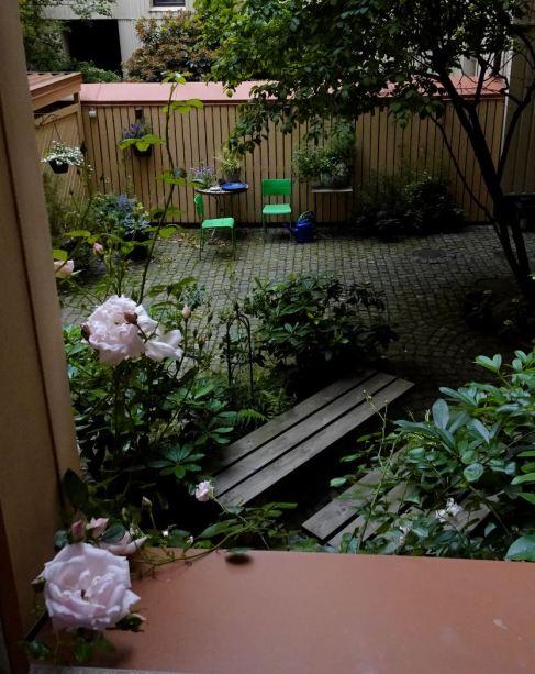 Por la ventana de la cocina. Foto R.Puig