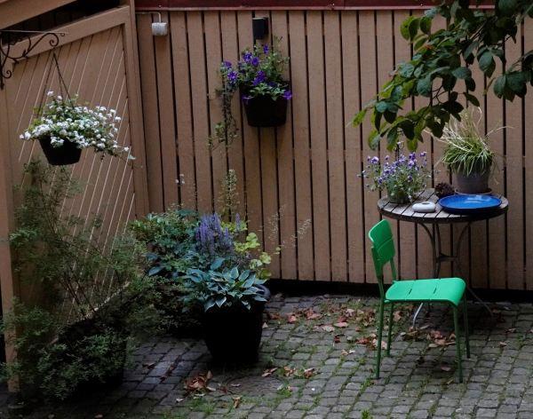 Nuestro patio vecinal. Foto R.Puig
