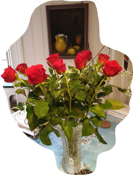 Rosas del supermercado. Foto R.Puig