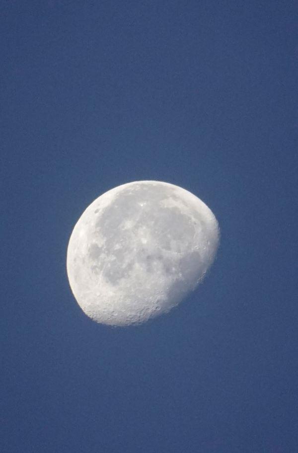 Luna hace tres días. Playa de la Almadraba. Foto R. Puig