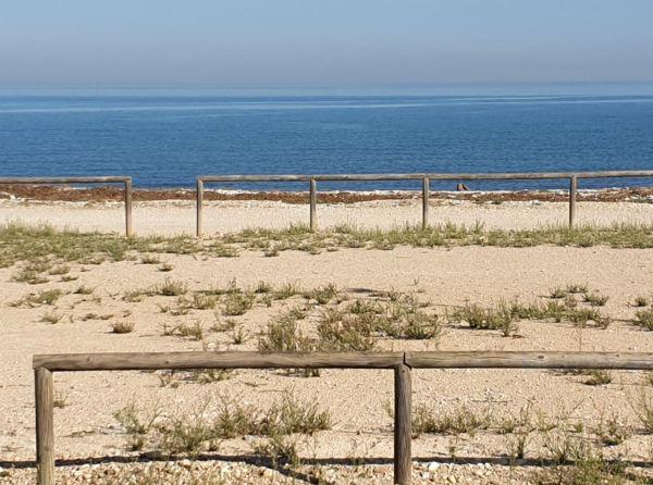Octubre en la playa de la Almadraba. Foto R.Puig