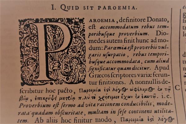 Quid sit paroemia. Foto R.Puig