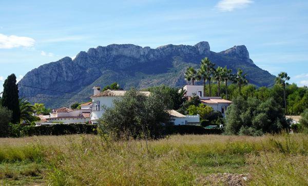 El Segaria omnipresente. Els Poblets. Foto R.Puig
