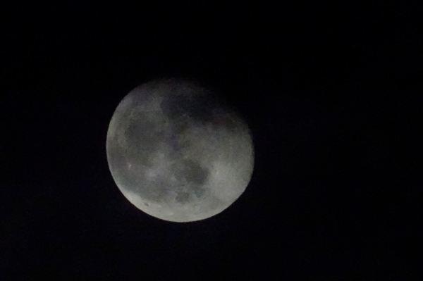 Luna de noviembre 2. Foto R.Puig