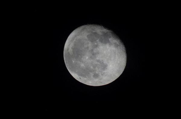 Luna de noviembre 4. Foto R.Puig